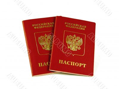 Foreign Russian passports