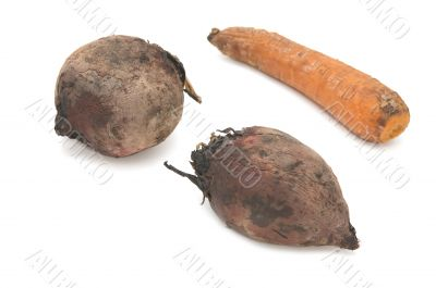 boiled beet and carrot on white