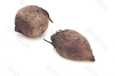 boiled beet on white