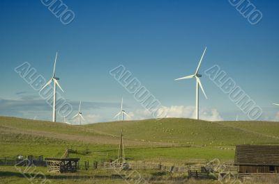 Wind generators in a rural setting