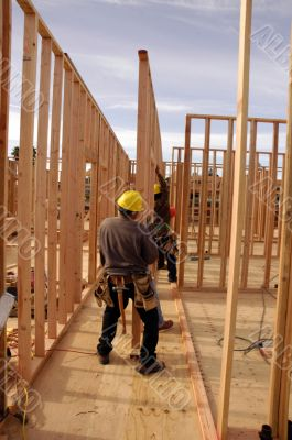Hispanic carpenters setting a wall