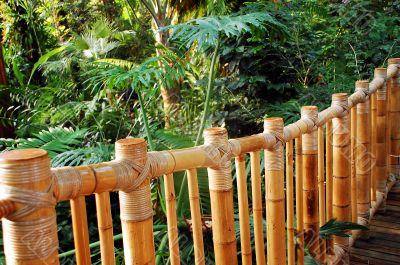 Botanical bridge