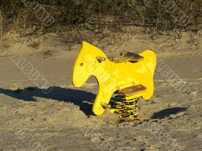 Lonely horse on the beach