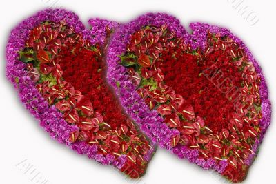 pink red rose flower hearts