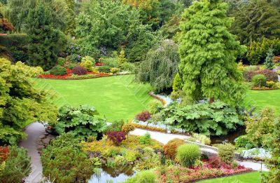 Lush garden scene