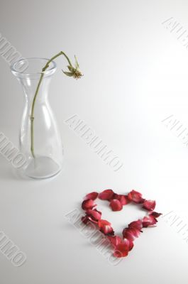 Bare Stem with Fallen Petal Heart