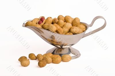 Peanut crops isolated on white background