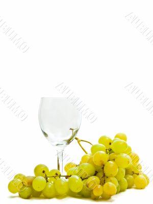wineglass and grape