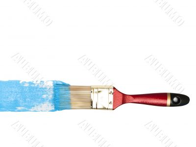 bristle with blue color