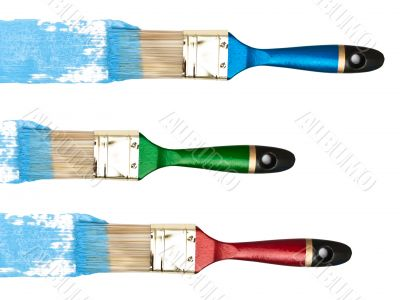 bristles with blue color