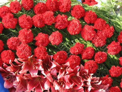 Bright red flowers with green leaves composition background