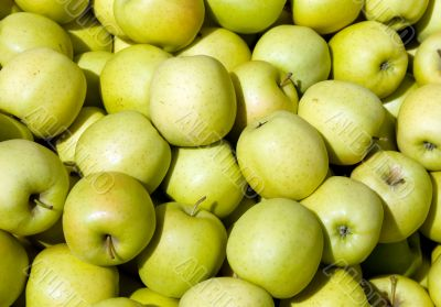 `Golden Delicious` Apples
