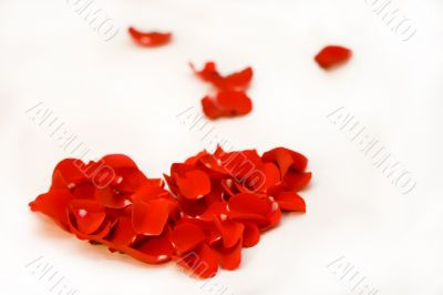 Heart symbol made with the red roses petals