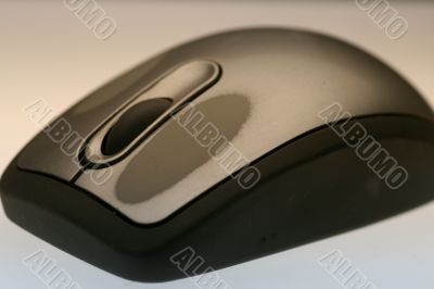 Worn Mouse