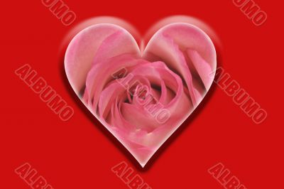 heart with flower rose