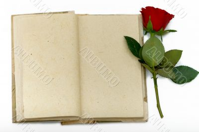 Diary with opened sheets and with red rose