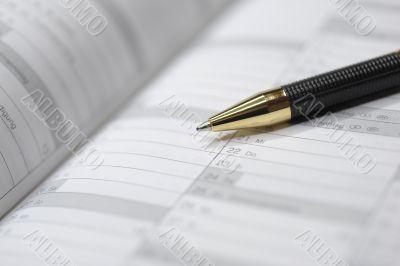 diary calendar, schedule, pen, plan
