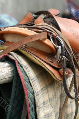 Saddle Up / Horse Equipment