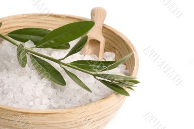 spa. bath salt and olive branch