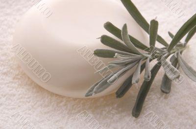 milk soap and fresh herbs