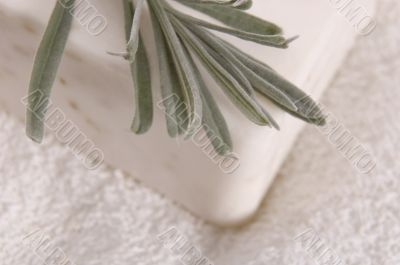milk soap and fresh herbs