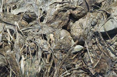 dry background. erosion