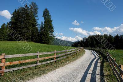 Alpine countryside road among meadows