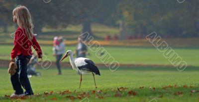 Child with white Stork (Ciconia ciconia)