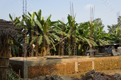 The contrast building process with a briks and palms