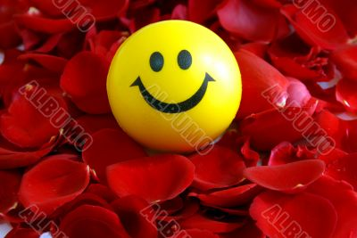 smile on Rose petals