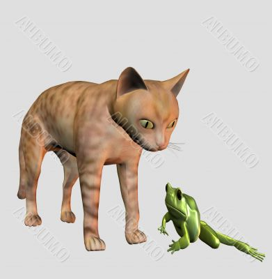 Meeting a house cat with a frog