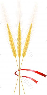 Wheat, three ears