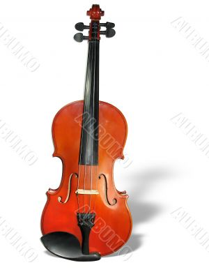 Classic violin with shadow isolated on white background
