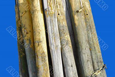 Bunch of Big Logs