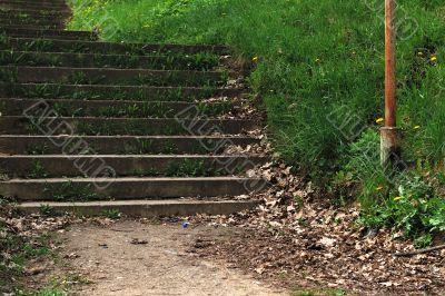 grassy old stairway
