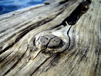 knot in old wood