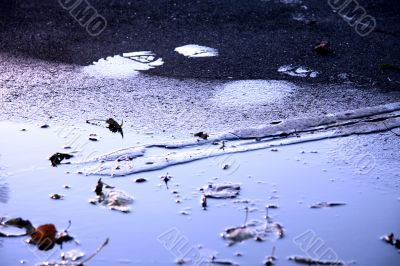 wet footprints