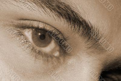 Hazel Eyes sepia