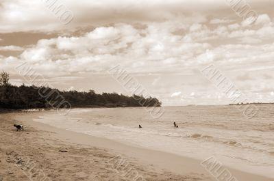 Laie Beach Honolulu Hawaii sepia
