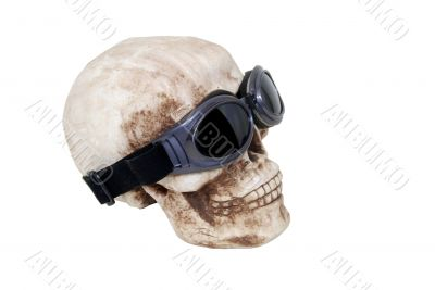 Skull and goggles