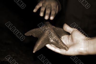 Woman Holding Starfish sepia