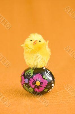 Chicken on easter egg