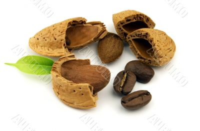Nuts and coffee