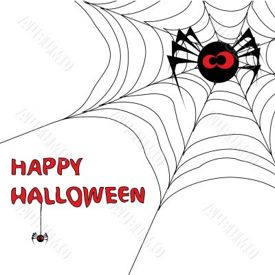 Halloween background with spider`s web 3.