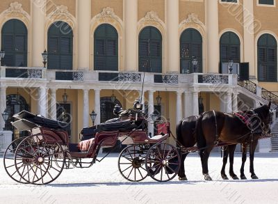 Coach in front of castle schoenbrunn, Vienna