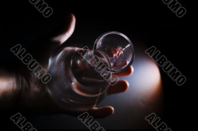 Hand Holding Chemisrty Vial