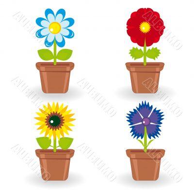 Set of four flowers in flowerpots
