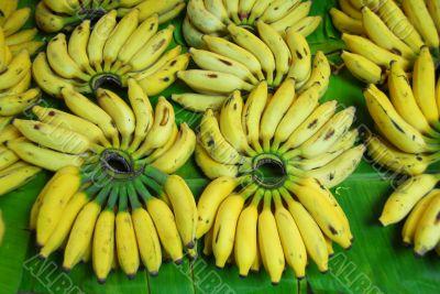 banana fruit for sale