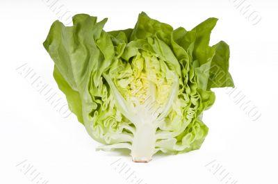 Cut lettuce on white background