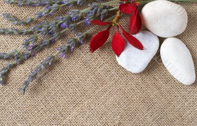 Beautiful lavender and pebbles